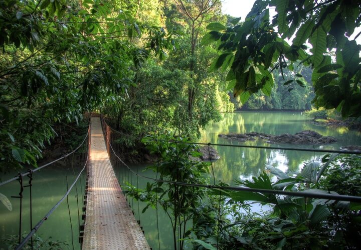 Reasons to Visit Costa Rica (and maybe stay forever)