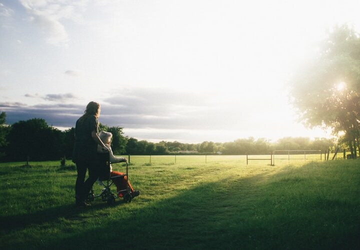 Top Tips For All Year Lawn Care