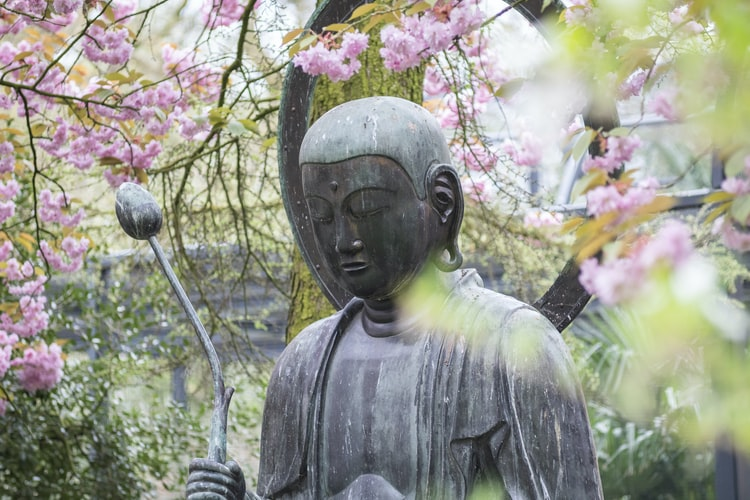 Stunning and Unique Buddha Statues