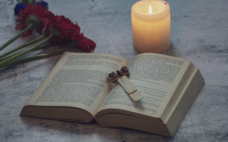 Sweet Mangnolias Book