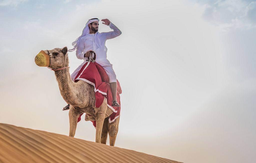 Salient Features of Dubai Desert Safari