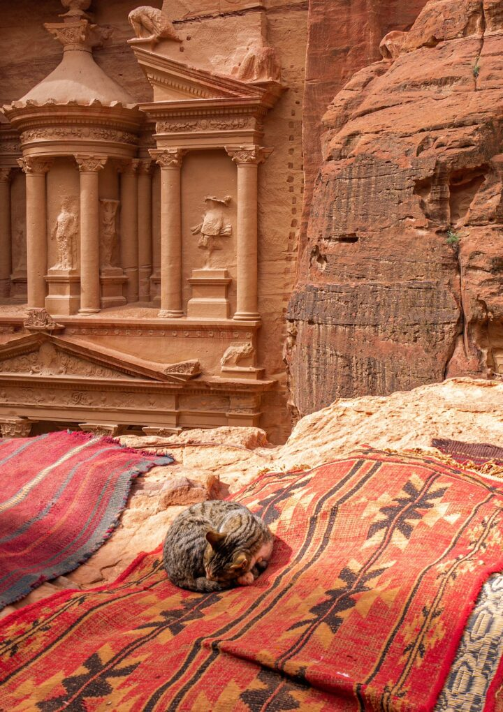 Top Tips For Finding the Perfect Jordan Tour Packages