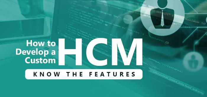 How to develop a Custom HCM