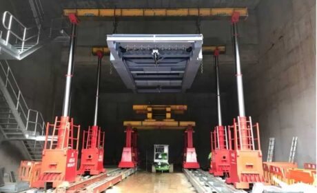 Plant Removal Services- The reasons to Use Specialist Lift Services