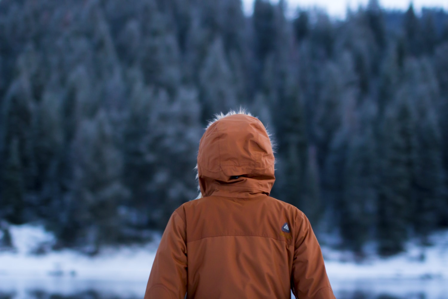 Best effective winter jackets and its importance in colder months