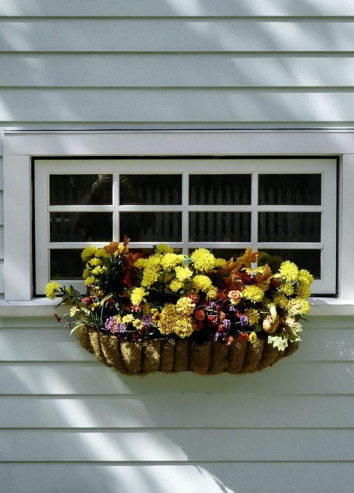 12 Low Maintenance Outdoor Hanging Plants